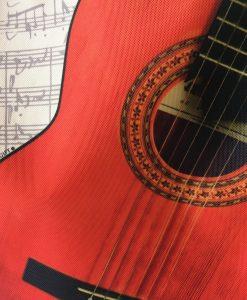 saco_guitarra