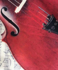 saco_violoncelo